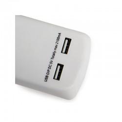 Interruptor 10A 250V IP54 Exterior Gris