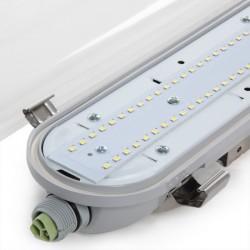 Equipo Estanco LED 55W 1560mm